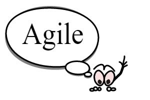 Read more about the article To become agile managers must think agile
