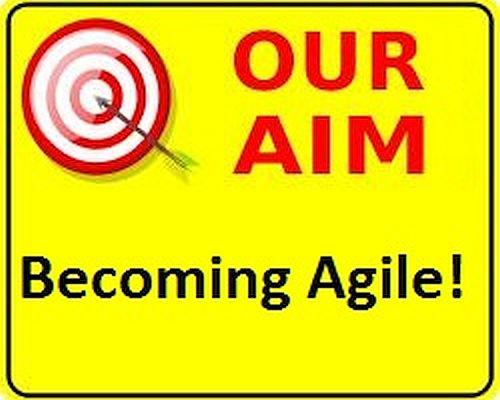 Why do you want to become agile?