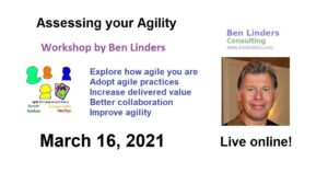 Workshop Assessing your Agility – Live Online