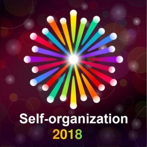Agile in 2018: Self-organization