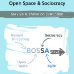 Book: Company-wide Agility with Beyond Budgeting, Open Space & Sociocracy