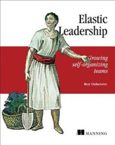 Book Cover: Book: Elastic Leadership