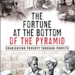 Book: The Fortune at the Bottom of the Pyramid
