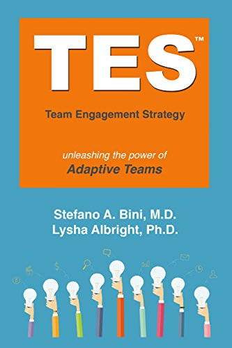 Book Cover: Book: Tes: The Team Engagement Strategy