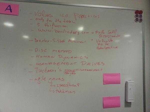 nlScrum 20130206 agile self assessments by Doralin